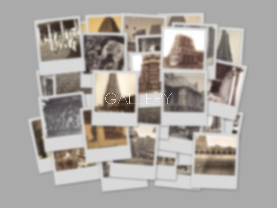 photographs3